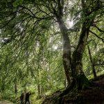lolaruizfotos_web -02883 paisaje